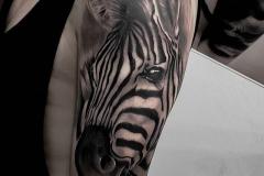 Tattoo Zebra