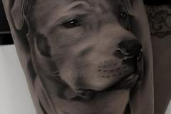 tattoo-realismo-00029