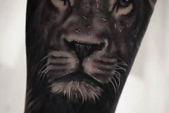 tattoo-realismo-00038