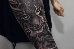 Tattoo lince realismo