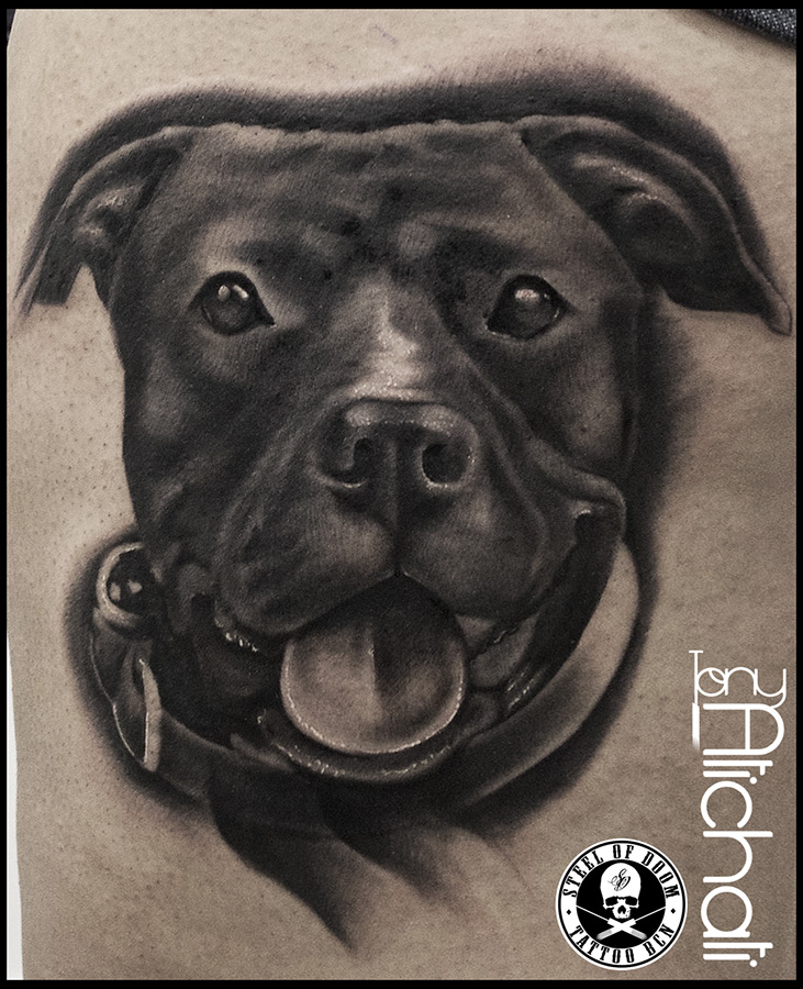 tatuaje pit bull pictures to pin on pinterest tattooskid. Black Bedroom Furniture Sets. Home Design Ideas